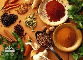 especias y condimentos indio